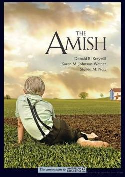 amish-kraybill-johnson-weiner-nolt
