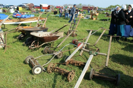 Amish Lawnmowers
