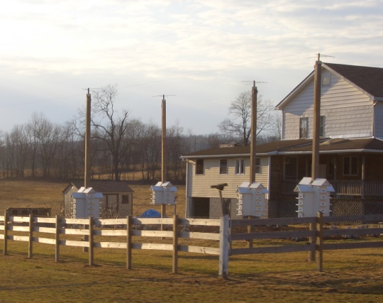 amish marten houses