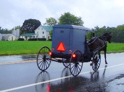 amish maryland buggy