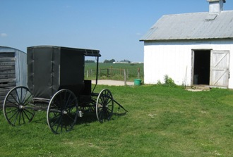 amish minnesota buggy