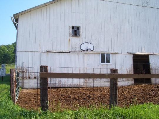 amish mud basketball