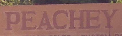 amish names