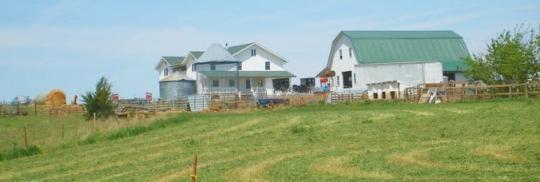 amish nebraska farm