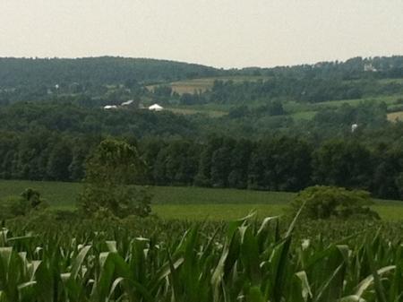 Amish New York Ft Plain