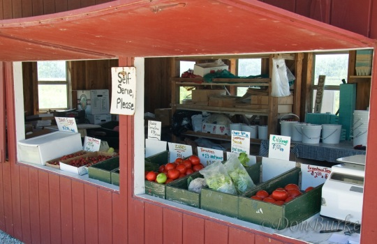 amish-produce-stand-jamesport