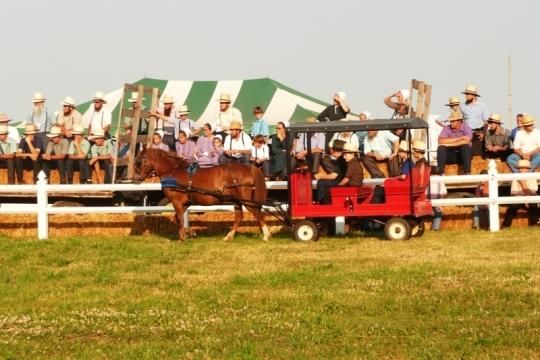 Amish Red Wagon