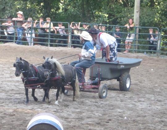 Amish Rodeo Pony Cart