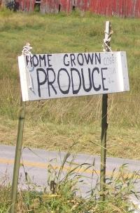 Amish Salad Produce