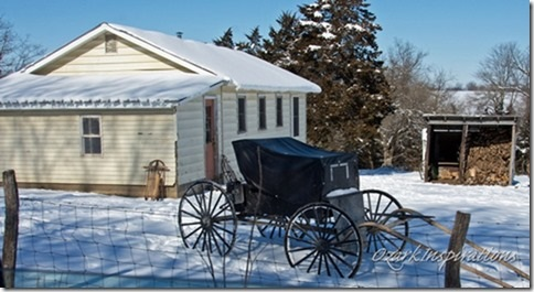 amish-school-carriage-parked