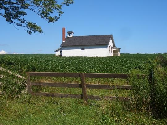 amish school crops