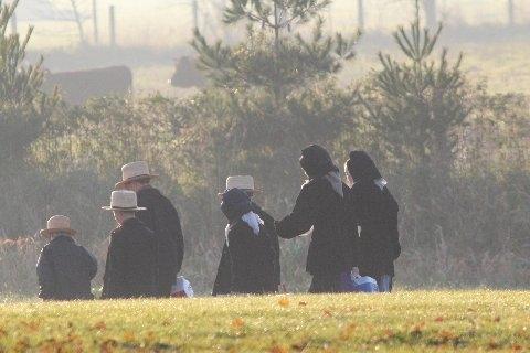 amish-schoolchildren-walking