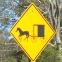 Amish Sheds VA