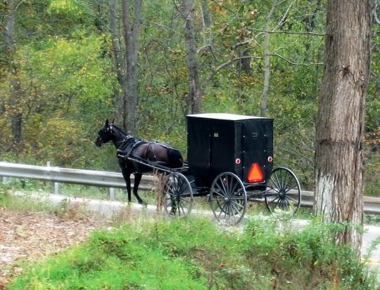 amish smicksburg indiana county pa