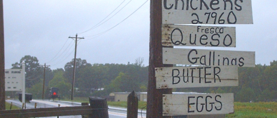 Amish St Marys County Maryland