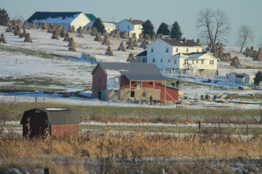 amish-structure-workers