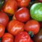 Amish Tomato