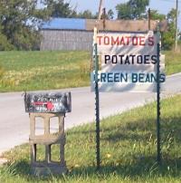 Amish Tomatoes
