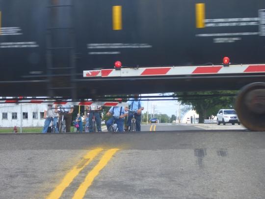 amish train nappanee