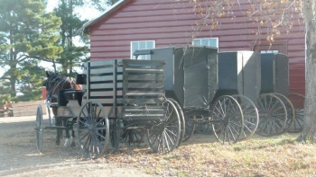 Amish Transport Ethridge Tennessee