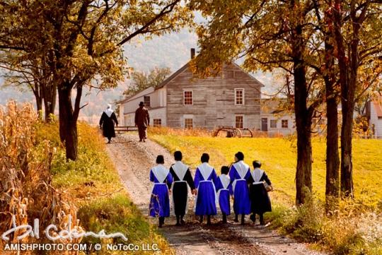 Amish Wedding Bill Coleman