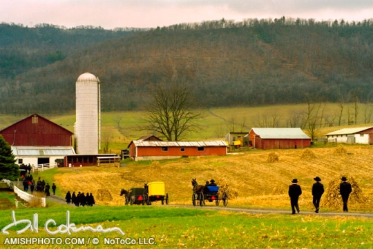 Amish Wedding PA Bill Coleman