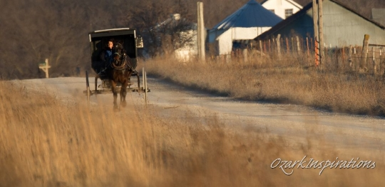 A (Calm) Christmas Shopping Weekend In Amish Country (25 Photos)