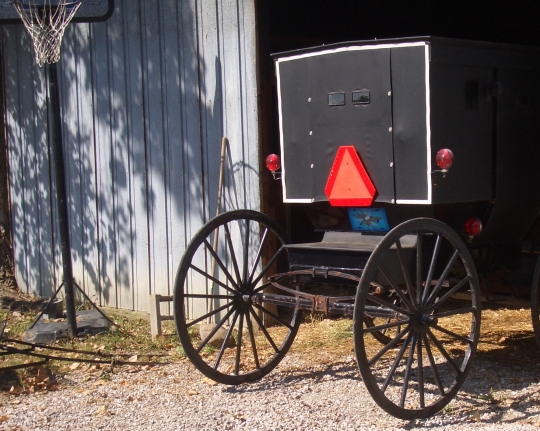 The Amish Buggy