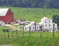 amish youth driving ohio farm