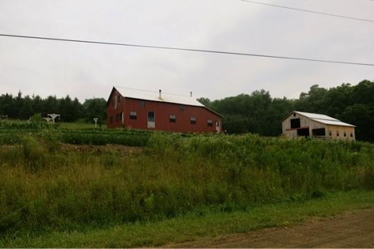 Angelica New York Amish
