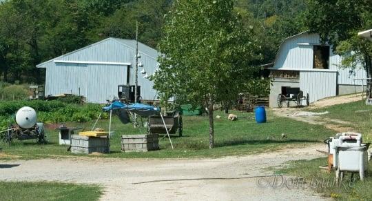 Arkansas Amish Farm