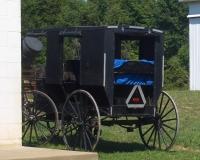 ashland ohio amish buggy