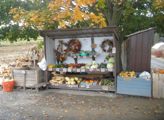 autumn-farm-stand