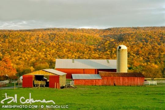 autumn-red-barn