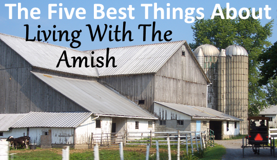 barn-yard-amish-pennsylvania