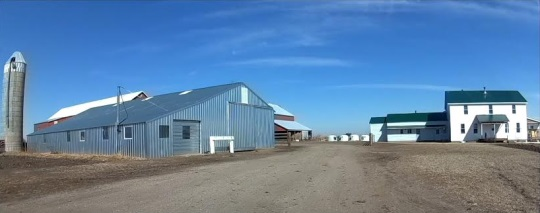 barnyard-amish-tripp-sd