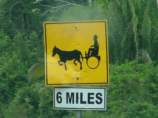 Buggy Signs Across America