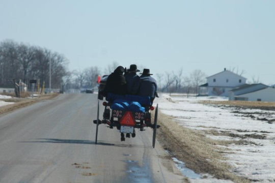 berne-amish-open-buggy