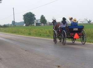 berne-indiana-family-in-carriage