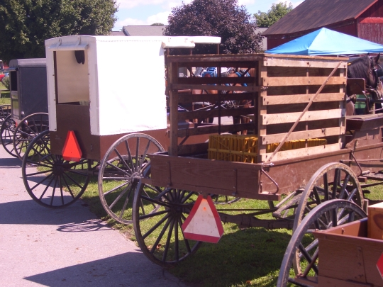 big valley auction amish buggies