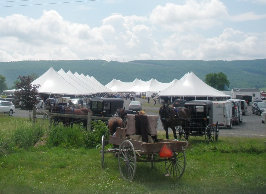 big-valley-auction-tents-wide-view