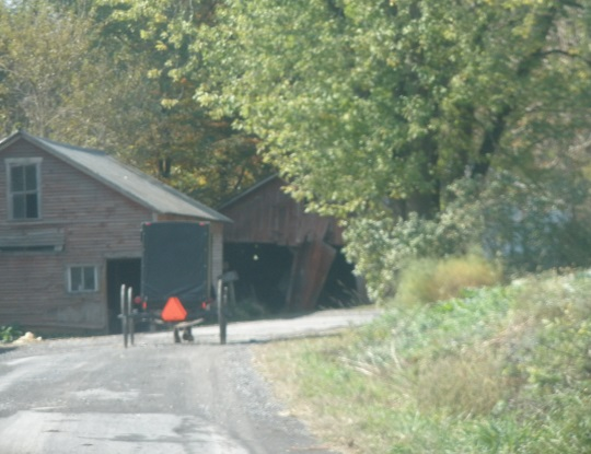 black-buggy-snyder-county-pennsylvania