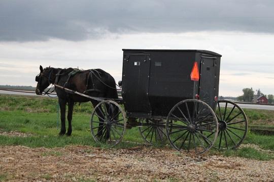 Buchanan Co Iowa Amish Buggy