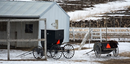 buggies-at-school-iowa-amish