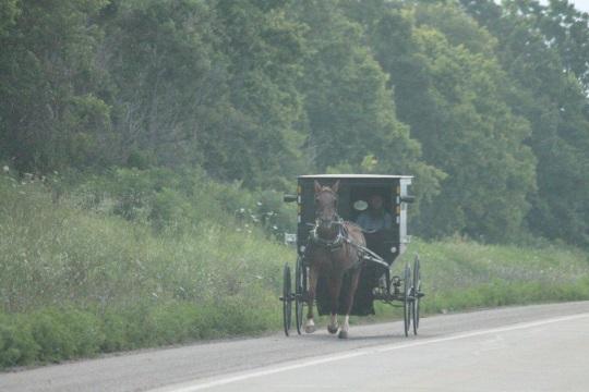 buggy-arthur-road