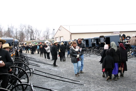 buggy-line-bart-sale-16