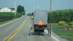 buggy-on-lancaster-co-road