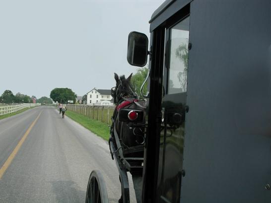 buggy photo lancaster amish