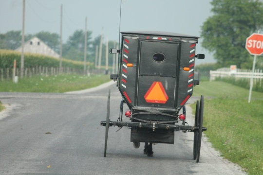buggy-reflectors-amish-illinois