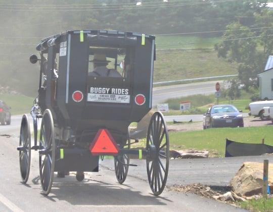 buggy rides amish